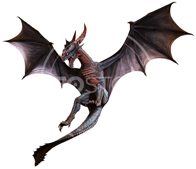 NeoStock - CG Wyvern Dragon Fantasy - Stock Photography II