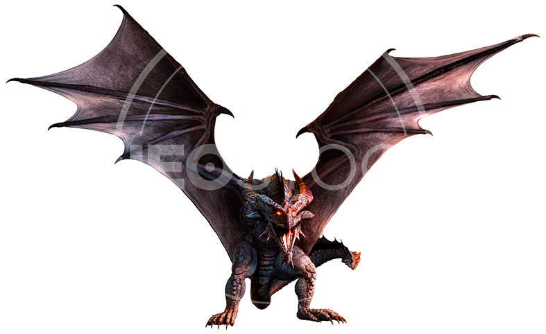 NeoStock - CG Wyvern Dragon Fantasy - Stock Photography IV