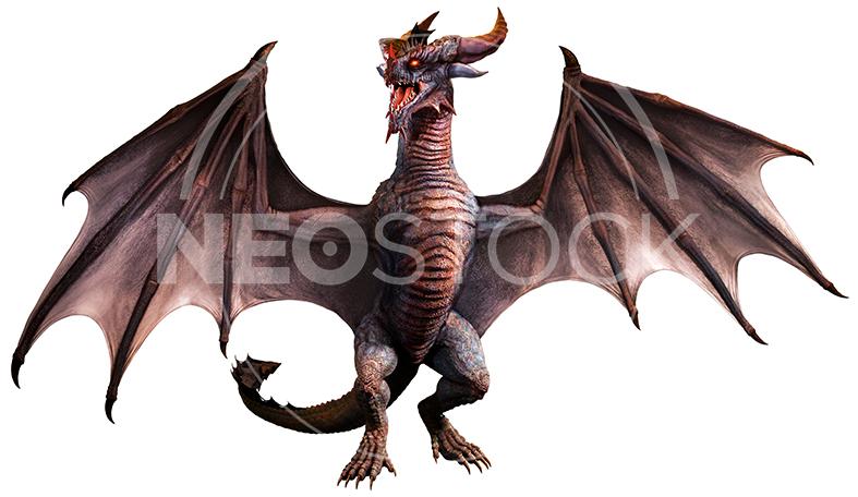 NeoStock - CG Wyvern Dragon Fantasy - Stock Photography III