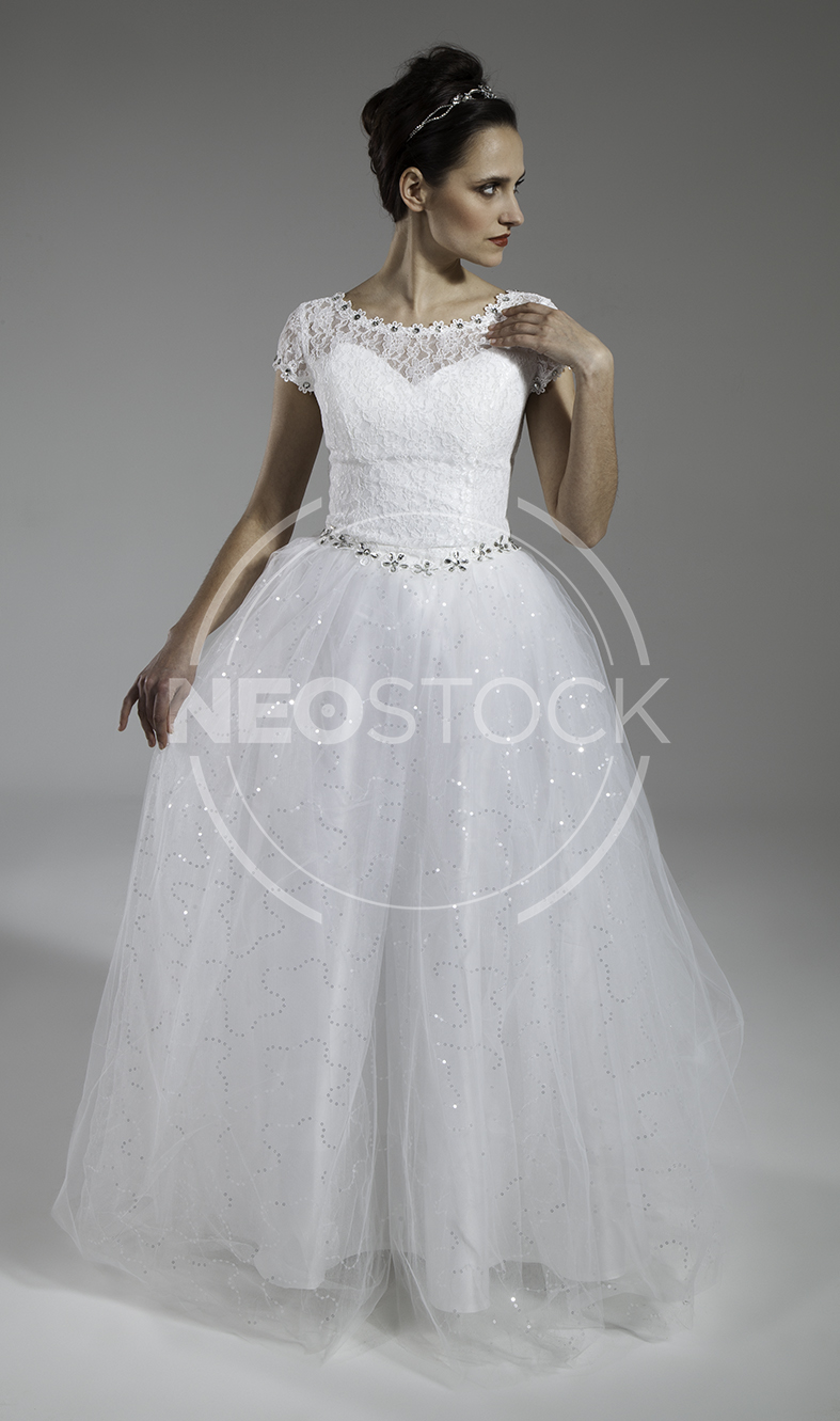 NeoStock - Elena Cinderella Gown - Stock Photography V