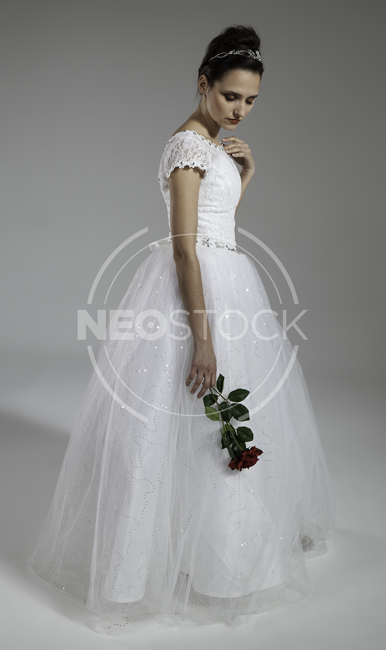 NeoStock - Elena Cinderella Gown - Stock Photography I